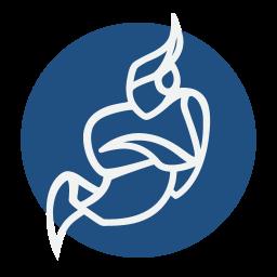 Logo Jitsi